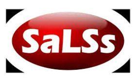 SALSS Importação e Comércio, Lda